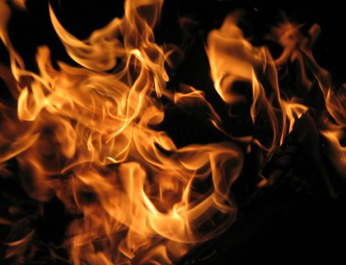 Western Australian Fires Declared A Catastrophe