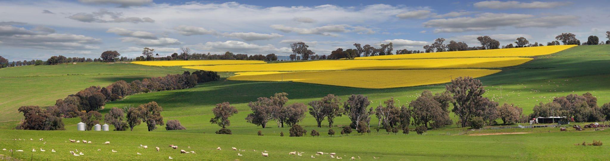 Farm Quotes 5 Farm Insurance Quote Tips  Quotesonline